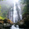 矢研の滝1